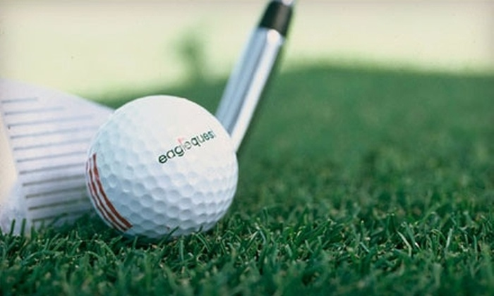 Eaglequest Golf - Williston Heights - Mountview: $14 for One Hour of Indoor Driving Range Golf Practice at the Calgary Dome ($28.35 Value) or $118 for a 900-Minute Time Card at the Calgary Dome ($330.75 Value) from Eaglequest Golf