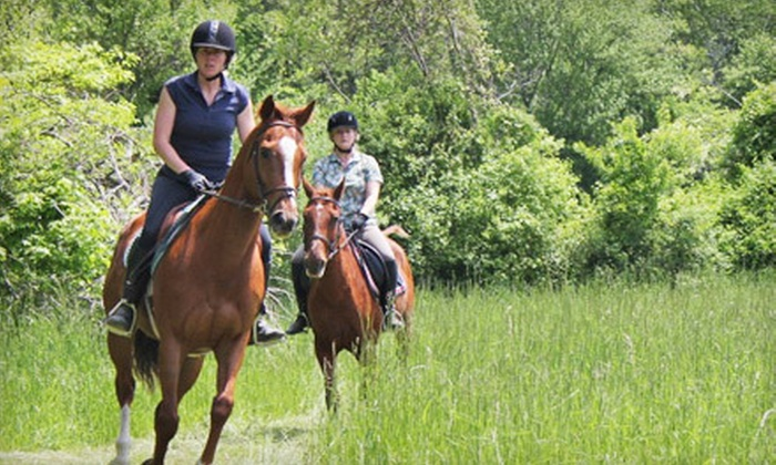 Treasure Hill Farm - Highland Park: One or Two 60-Minute Semiprivate Horseback-Riding Lessons at Treasure Hill Farm in Salem (Up to 56% Off)