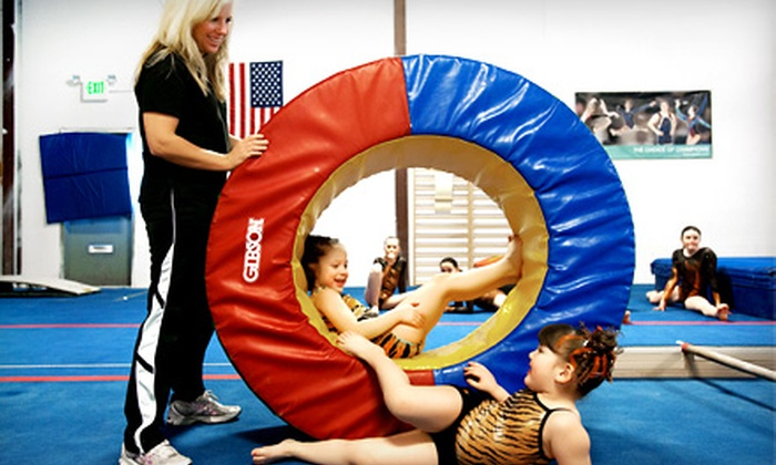 TIGAR Gymnastics & Cheer - Wheat Ridge: $39 for Eight Weeks of Children's Classes at TIGAR Gymnastics & Cheer in Wheat Ridge (Up to $140 Value)