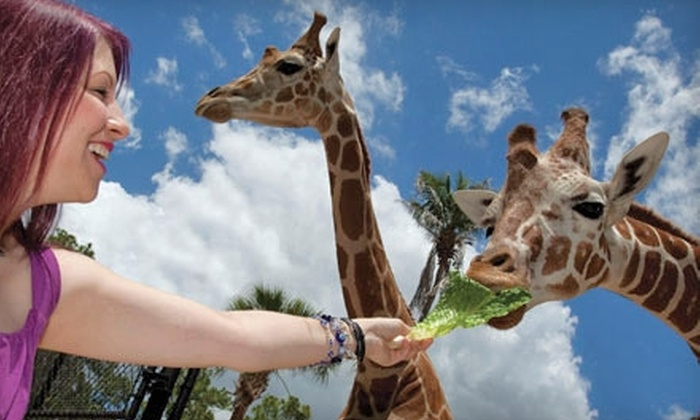 Naples Zoo at Caribbean Gardens - Naples: One-Year Family Membership to Naples Zoo at Caribbean Gardens (Up to $159.95 Value)