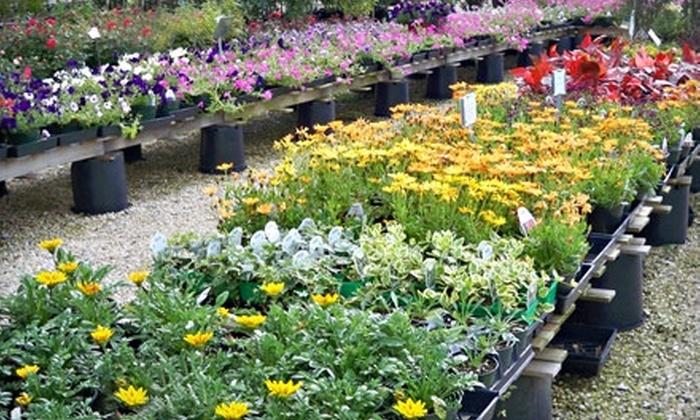 Pryor Creek Nursery - Tulsa: $25 for $50 Worth of Flowers, Plants, and Trees at Pryor Creek Nursery in Pryor
