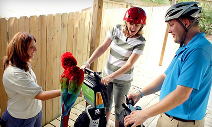 Segway Safari Tour at the Zoo - St Joses: $34 for Two-Hour Segway PT Zoo Adventure at Central Florida Zoo in Sanford (Up to $69 Value)