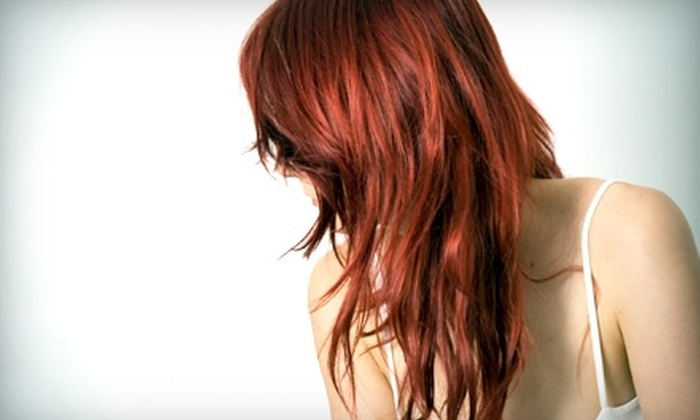 Trends Hair Salon - Noblesville: $40 for Cut, Color, and Facial Waxing (Up to $82 Value) or $60 for Full Highlights, Cut, and Condition Treatment ($125 Value) at Trends Hair Salon