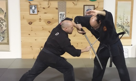 $30 for $200 Worth of Martial-Arts Lessons — Ninja Delaware