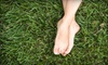 Backyard Depot: Lawn Services from Backyard Depot. Three Options Available.