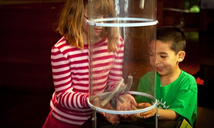 CuriOdyssey - San Mateo: Child's Ticket or Adult Ticket to CuriOdyssey in San Mateo