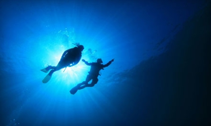 Scuba Works - Jupiter Bay: Snorkeling Trip and Scuba Classes from Scuba Works in Jupiter. Three Options Available.