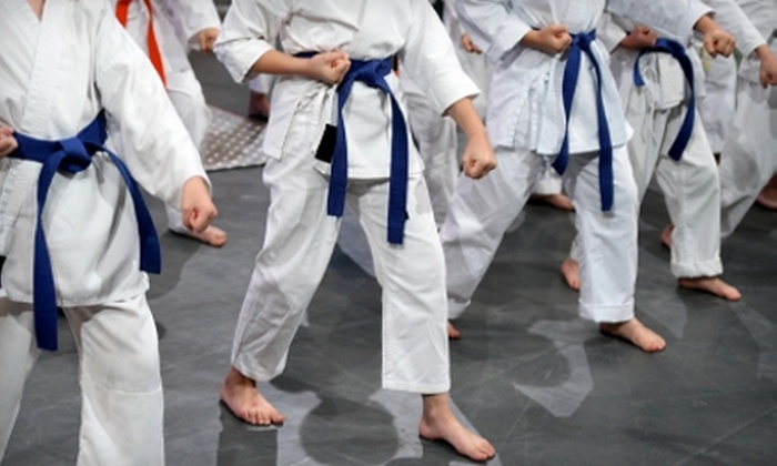 No Joke Martial Arts - Loves Park: $50 for a One-Month Unlimited Gym Membership at No Joke Martial Arts ($119 Value)