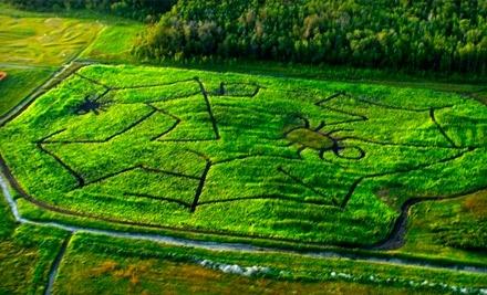 Deer Meadow Farms - Deer Meadow Farms in Winnipeg