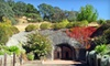 Up to 76% Off Tour and Wine Tasting in St. Helena
