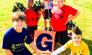 ALM Sports: Two-Week Baseball Camp at ALM Sports (45% Off)
