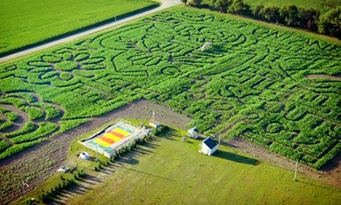 Camp Fontanelle - Camp Fontanelle: Corn Maze, Pumpkin Patch and Laser Tag for 2, 4, or 6 at Maize Camp Fontanelle (Up to 54% Off). Five Options Available.