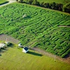 Up to 54% Off Corn Maze and Laser Tag
