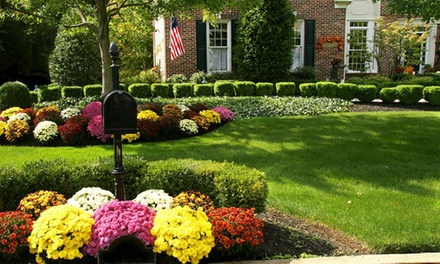 Up to 54% Off Landscaping services at A Better Solution Lawn Care