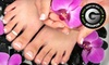 Jonathan Neil Salon & Spa - Downtown Halifax: $29 for Express Mani-Pedi Package with Brow Wax or Brow Tint at Jonathan Neil Salon and Spa ($62 Value)