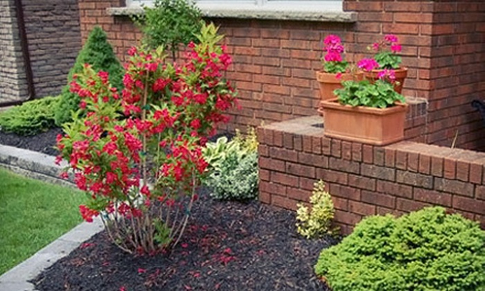 Curb Appeal Landscaping - St Catharines-Niagara: $75 for Two Hours of Landscaping Service with 30-Minute Consultation from Curb Appeal Landscaping ($219.95 Value)