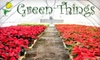 Green Things - Tucson: $10 for $20 Worth of Holiday Plants and Christmas Trees at Green Things