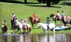 Hunting Ground Farm - 5, Dublin: One, Three, or Five Group Horseback-Riding Lessons at Hunting Ground Farm in Whiteford (Up to 60% Off)