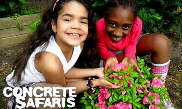 Concrete Safaris: Donate $10 to Help Concrete Safaris Expand Community Fruit and Vegetable Gardens for Children in East Harlem
