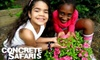 (G-Team) Concrete Safaris: Donate $10 to Help Concrete Safaris Expand Community Fruit and Vegetable Gardens for Children in East Harlem