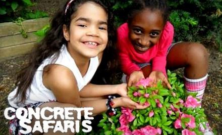 $10 Donation to Concrete Safaris - Concrete Safaris in