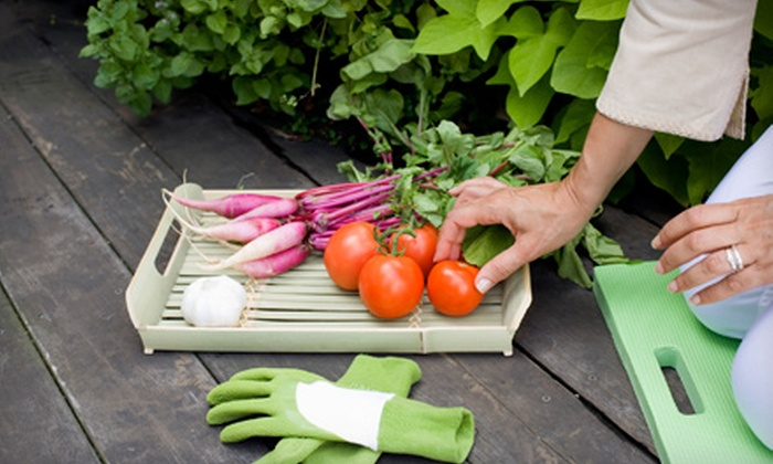 Resolution Gardens - Beckett Meadows: $199 for a 4'x4' Vegetable Garden with Delivery and Installation from Resolution Gardens ($510 Value)