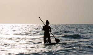 Pura Vida Divers: All-Day Surfboard or Paddleboard Rental for One, Two, or Four from Pura Vida Divers (50% Off)
