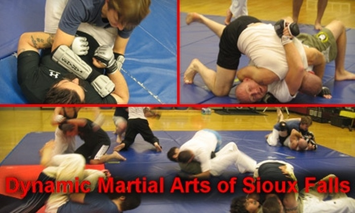 Dynamic Martial Arts of Sioux Falls - Sioux Falls: $30 for a One-Month Membership at Dynamic Martial Arts of Sioux Falls ($80 Value)