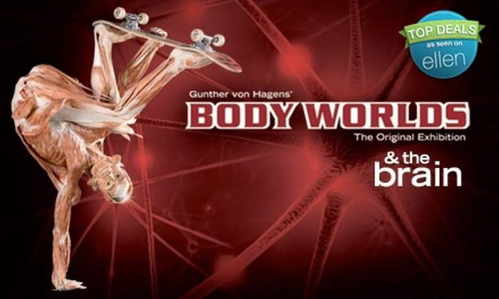 """""""Body Worlds & The Brain"""" - Portland: $25 for Two Tickets to """"Body Worlds & The Brain"""" at OMSI (Up to $50 Value)"""