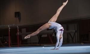The Rock Gymnastics Training Center: $36 for $68 Worth of Gymnastics — The Rock Gymnastics Training Center