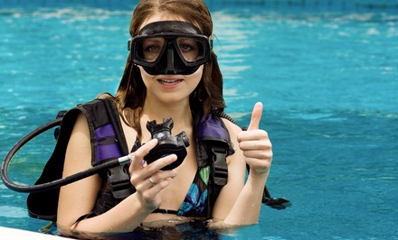 Scuba-Diving Class or PADI Certification Program at Underwater Phantaseas in Lakewood (Up to 48% Off)