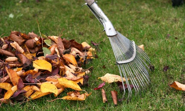 JnJlandscaping Plus, LLC - Atlanta: $84 for Leaf Cleanup for Up to 1,000 Sq. Ft. from JnJlandscaping Plus, LLC ($150 Value)