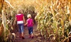 Up to 55% Off Farm Visit and Pumpkins