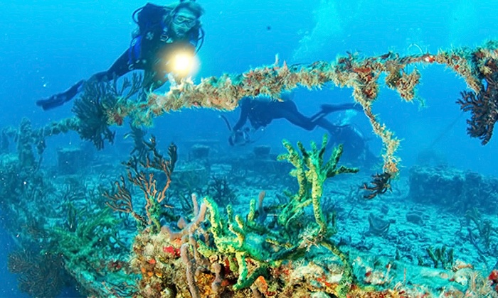 Silent World Dive Center - Key Largo: Recreational Scuba Dive Trip for Two or Four with Equipment from Silent World Dive Center (Up to 30% Off)