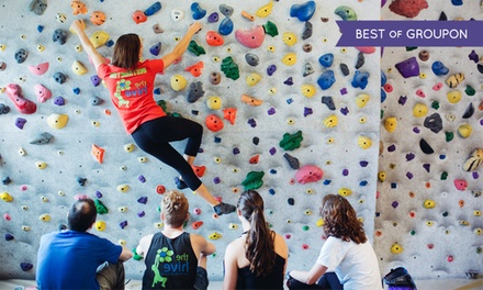 Intro to Bouldering Course and Two Weeks of Full Gym Access for One or Two at The Hive (Up to 61% Off)