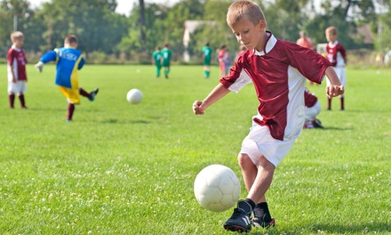 One Week of Full-Day Sports Camp for Kids Ages 5–13 at Los Gatos United Soccer (47%Off). Two Sessions Available.