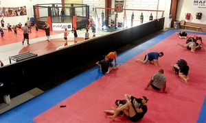 Evolve: MMA, Brazilian Jujitsu, and Kickboxing Classes at Evolve (Up to 77% Off)