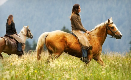 One horseback ride for two