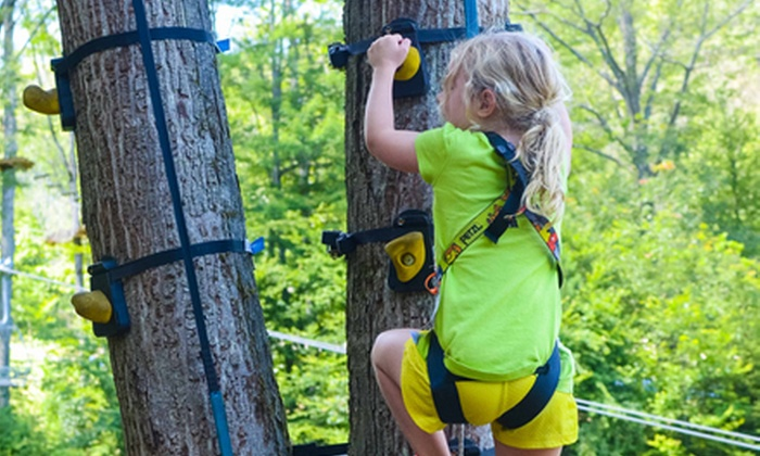 The Adventure Park at Sandy Spring - Ashton - Sandy Spring: $19 for Monkey Grove Tree-Climbing Passes for Two at The Adventure Park at Sandy Spring ($38 Value)