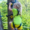 Half Off Monkey Grove Tree Climbing