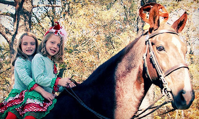 Fairhope Stables - Suwanee-Duluth: Two Pony Rides, Two or Three Horseback-Riding Lessons, or a Pony Party for 12 at Fairhope Stables (Up to 57% Off)