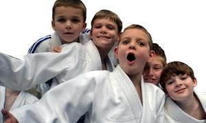 Wall To Wall Martial Arts: $49 for $125 Groupon — Wall 2 Wall Martial Arts