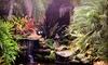 ReefChoice, inc. - Miami: $45 for $85 Worth of Aquarium Visits — ReefChoice, inc.