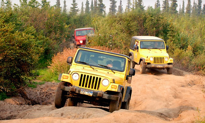 Alaska Travel Adventures - McKinley Park: Denali Backcountry Jeep Safari for Two or Four from Alaska Travel Adventures (Up to 55% Off)