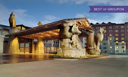 Stay with Daily Water Park Passes and Resort Credit at Great Wolf Lodge Grapevine in Texas. Dates into March.