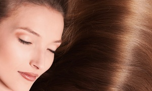 EBS Salon & Spa: Keratin Treatment with Optional Haircut at EBS Salon & Spa (62% Off)