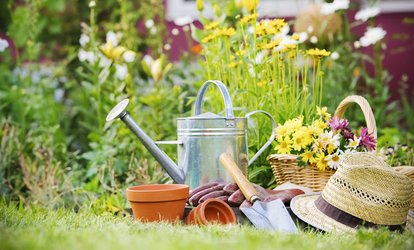 $27 for $50 Worth of Plants and Gardening Supplies at Williams Magical Garden Center & Landscape