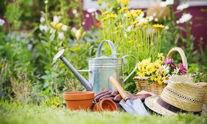 Am nagement et entretien de jardin di fresco groupon for Entretien jardin 16