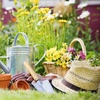 40% Off Plants and Gardening Supplies