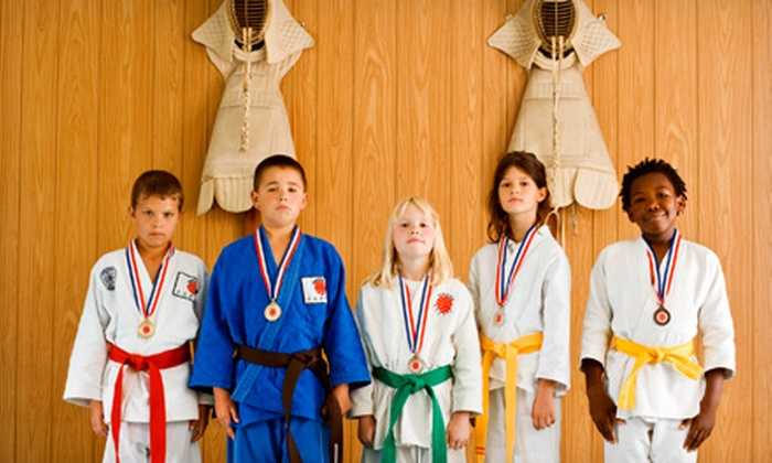 Meikyo Dojo - Hudson: $34 for $75 Worth of Martial-Arts Classes at Meikyo Dojo
